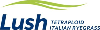 Lush The first tetraploid Italian ryegrass available with AR37 endophyte