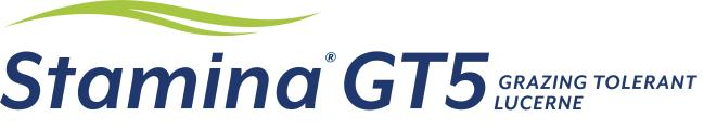 Stamina® GT5 The ultimate choice for grazing tolerant lucerne.