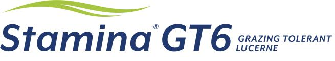 Stamina® GT6 The first grazing tolerant lucerne for the Australian market.